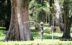 Bailarina (Rctk caRIOca) Tags: rio de janeiro botnico jardim