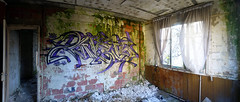 Weis (blairniemichelle) Tags: terrain paris art graffiti paint tag tags graff aerosol mur atg idf panoramique rouille moisissure ambiance urbex abandone weis abandonee tracedirect
