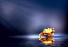 3 (Robert Björkén (Hobbyfotograf)) Tags: reflection water leaf dof purple bokeh ripple serene minimalistic
