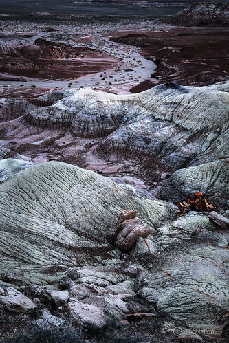 JihoNation-jiho-sohn-baltimore-photography-0012-IMG_8594 petrified-forest-arizona-national-park