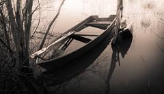 Two boats (Antti Tassberg) Tags: blackandwhite bw water monochrome espoo finland boat raw smartphone microsoft wp xl vesi vene 950 carlzeiss uusimaa dng lumia pureview awailablelight lumiachallenge lumia950xl