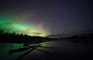 Aurora shining on the Geminids maximum night