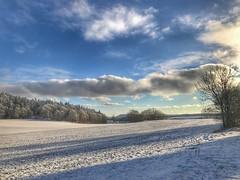 Winterlandschaft am Zeller Horn (Blende2,8) Tags: zellerhorn felder wiesen badenwürttemberg bäume wald schnee schwäbischalb winterlandschaft