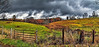 IMG_2102-04Ptzl1scTBbLGE (ultravivid imaging) Tags: ultravividimaging ultra vivid imaging ultravivid colorful canon canon5dmk2 clouds stormclouds scenic rural rainyday vista farm fields fence gate