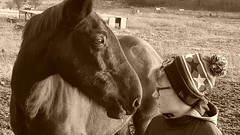 Horse Whisper (gary.keary) Tags: horse boy whisperer