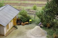2017_01_22_Modelspoordagen Rijswijk_047 (dmq images) Tags: midsommar pa högskogen modelleisenbahn model railway railroad scale schaal modelspoor h0 187 layout modelspoordagen rijswijk
