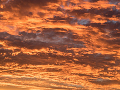 20170124-202734-20170124-_1240289 (timhughes) Tags: 2017 canberra january sunset