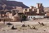 Marocco 0103_bassa copia (Angela Vicino) Tags: antropologico paesaggio marocco