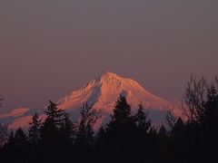 Mount Hood with its full snow hat (Bushman.K) Tags: sunset sky tree mounthood oregon