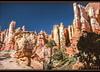 Bryce Canyon National Park (ctofcsco) Tags: analog blue canon canoscan canoscan9000fmarkii circularpolarizerfilter cpl ef35105mmf3545 eos eos620 explore explored film green landscape orange scanned slide unitedstates usa white bryce brycecanyon geo:lat=3762208900 geo:lon=11215960700 geotagged utah outdoor canyon