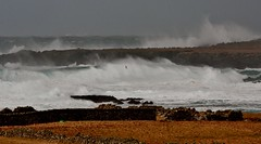 Wintry Shores IMG_0333 (Ronnierob) Tags: stormyseas quendalebay