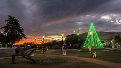 """Vestigios de navidad"" - ""Christmas Wonders"" (marcos.h_alvarez) Tags: navidad christmas atardecer daireaux provinciadebuenosaires argentina mágico magic sunset"