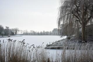 2017-01 Winters aangezicht op de historische vestingwallen - Brielle/NL