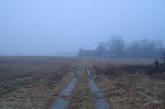Mysterious Fog (IRick Photography) Tags: mysterious fog farm farmhouse house barn barns country rural mood moody abandoned road mist