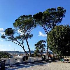 Roma - Terrazza del Pincio