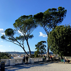 Roma - Terrazza del Pincio (pom.angers) Tags: panasonicdmctz30 february 2017 roma rome lazio italia italy europeanunion pincio terrazzadelpincio trees 100 150 200