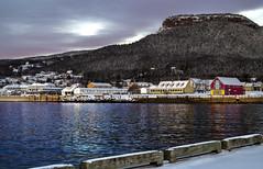 Dock Time (Danny VB) Tags: canon 6d winter snow dock quai percé gaspesie quebec canada