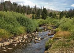 Lake Creek (SolanoSnapper) Tags: wyoming lakecreek medicinebownationalforest