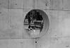Child in the Circle (vtuli77) Tags: street blackandwhite monochrome canon 50mm chandigarh scottkelby niftyfifty canon450d digitalrebelxsi canondigitalrebelxsi worldwidewalk