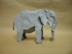 African Elephant (shuki.kato) Tags: elephant paper origami african korean fold complex slope kato shuki ogami hanji