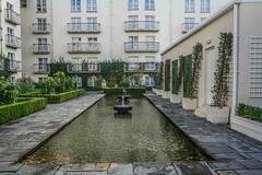 MERRION HOTEL DUBLIN [GARDENS]-110298