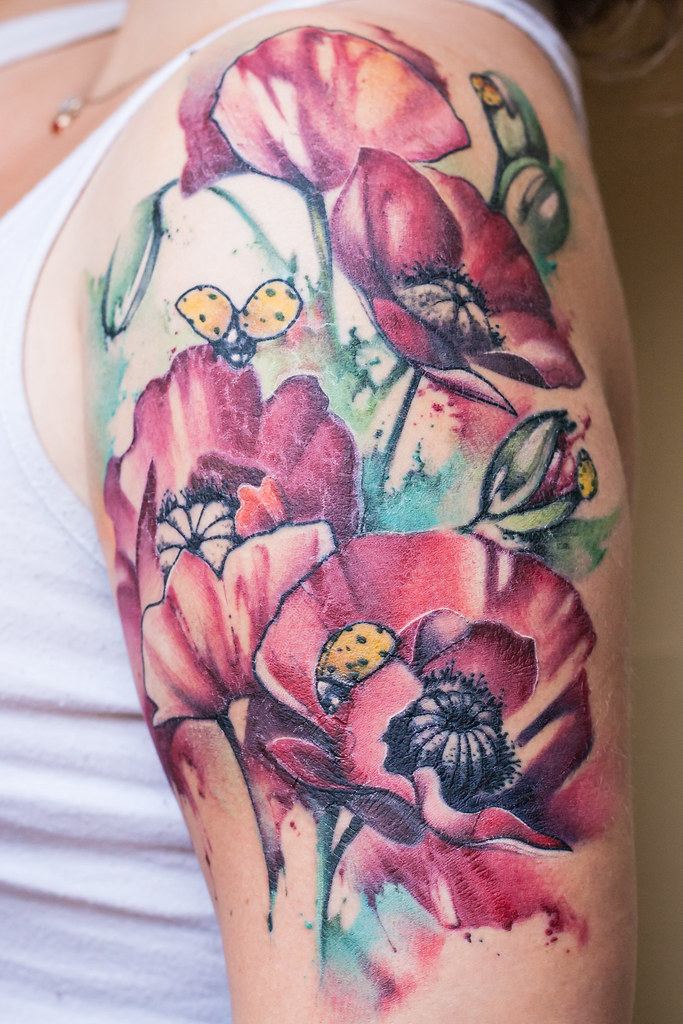 The world 39 s best photos of poppy and tattoo flickr hive mind for Watercolor poppy tattoo