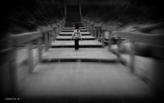 """""""Não é necessário ver toda a escada. Apenas dê o primeiro passo."""" Martin Luther King (antoninodias13) Tags: praia portugal faro pb família criança algarve aljezur escadas regresso silhuetas afectos"""