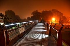 DSC_7719_Mist by the river Wensum