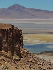 Salar de Tara (Mono Andes) Tags: chile andes desierto altiplano punadeatacama regióndeantofagasta salardetara