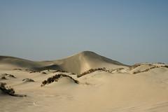 qatar deserto (55) (Parto Domani) Tags: trekking desert dunes dune arabic east ash desierto oriente middle duna peninsula medio dne wste dunas qatar deserto arabica dsert dnen penisola   escursione     shaqra dunaire  wste dsert dnen  dne