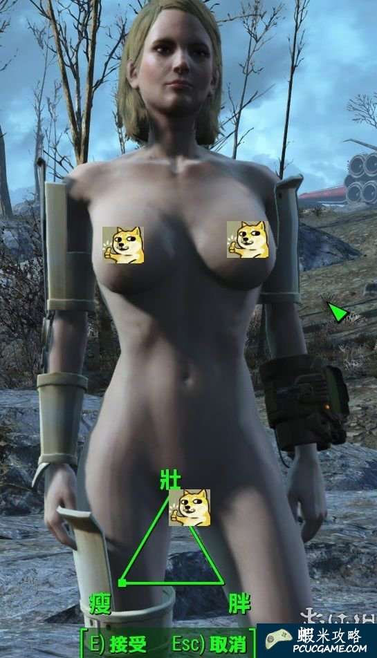 異塵餘生4 豐滿的胸部MOD