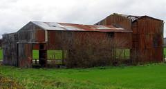 The old barn building. (pstone646) Tags: building barn farm rusty damaged derelict