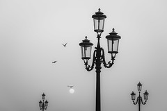 4 x 3 (Blende1.8) Tags: laterne leternen lantern alt old venice venedig venezia minimalism minimal minimalismus möwen gulls seagulls italia italy italien veneto sonnenaufgang morgen morning sun sonne mono monochrome monochrom sw schwarz weiss nikon d700 fx travel