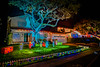 DSC04283--Pacific Grove, CA (Lance & Cromwell back from a Road Trip) Tags: pacificgrovexmas pacificgrove christmas christmaslights 2016 montereypeninsula montereycounty california