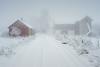 Farm in heavy snowfall (Helena Normark) Tags: snow snowfall winter whiteout farm farmland ust leinstrandmarka trondheim sørtrøndelag norway norge sonyalpha7 a7 voigtländer cv5015 nokton5015 nokton50mmf15