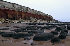 Hunstanton Cliffs [1/365 2017] (steven.kemp) Tags: hunstanton beach cliffs rocks stones cretaceous fossil norfolk seascape landscape sea water sand