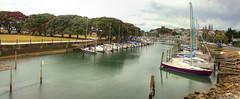 Milford Marina (vicmarnz) Tags: milford water marina hdr panorama yachts auckland newzealand pohutukawatrees