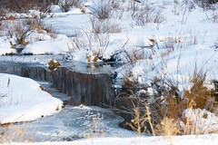 Favorite Places (Karen McQuilkin) Tags: pond winter backcountry utah snow hike ski ice karenmcquilkin