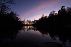 Mugdock Loch (GDDigitalArt) Tags: mugdock scotland cold nature reflection sunset winter woods loch trees silhouette