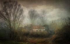 L' Abbandono (Raul-64) Tags: inverno paesaggio alberi casa foschia texture