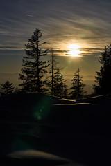 Sunset in Tyrol (W_von_S) Tags: sunsetintyrol sunset sonnenuntergang landscape landschaft paysage paesaggio tirol austria österreich alpen alps berge mountains trees bäume sonne sun light licht schnee schneelandschaft snow snowlandscape snowscape 2017 outdoor wvons werner sony himmel sky silhouette