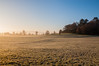 Morning Frost (Baker_1000) Tags: 2016 bristol ashtoncourt sunrise dawn morning frost winter light firstlight nikon d90 nikond90 raw fog