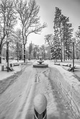 (Djordje Petrovic) Tags: blackandwhite bw vrnjackabanja serbia srbija snow tokina1224mm monochrom nikond80 fontain winter outdoor