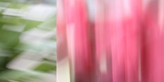 52/365 double abstract II (SarahLaBu) Tags: abstract abstrakt diptych diptychon icm green grün pink 365the2017edition 3652017 day52365 21feb17 canoneos500d canonrebelt1i weeklytheme