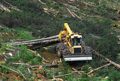 Tigercat 630D skidder (Static Phil) Tags: tigercat skidder tigercat630dskidder forestequipment
