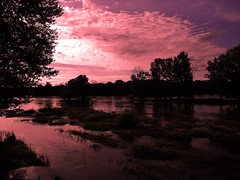 Pink water (François Tomasi) Tags: fleuve river rose pink loire indreetloire tours villedetours touraine france europe world sunset sunrise sun soleil ciel sky clouds cloud nuages nuage couleurs couleur colors color lights light lumières lumière sombre dark eau water nikon reflex photographie photography photo photoshop pointdevue pointofview pov tomasi françois françoistomasi yahoo google flickr arbre nature février 2017