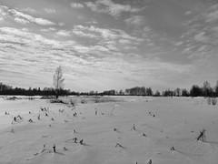 Зминий период, и у нас 6 месяцев зима..