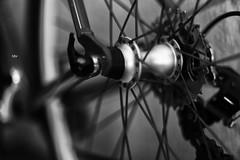 blanco y negro (betho itinerante) Tags: bn blanconegro detalles luz sombra contraste lineas llanta bike bicicleta rayos rueda detalle sombras