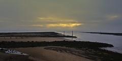 Low Tide Clyde (Bricheno) Tags: river estuary clyde riverclyde riverirvine confluence firthofclyde irvine ayrshire coast beach bricheno scotland scozia szkocja scoția schottland écosse escocia escòcia 蘇格蘭 स्कॉटलैंड σκωτία