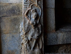 BEAUTY IN STONE (GOPAN G. NAIR [ GOPS Photography ]) Tags: india rock stone temple photography carving karnataka hoysala gops gopan dwarapalika gopsorg gopangnair gopsphotography